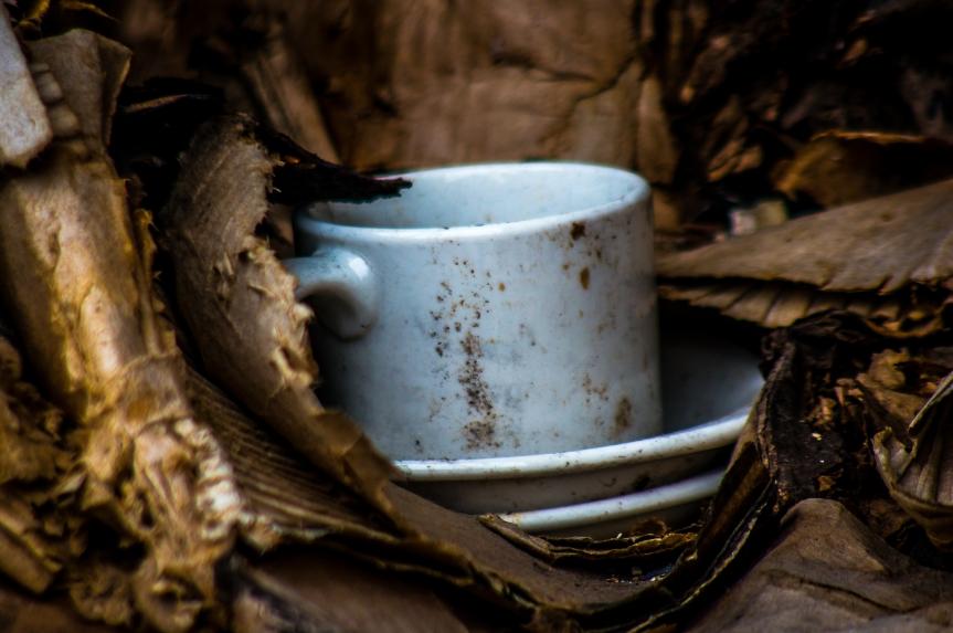 Coffee on Linwood